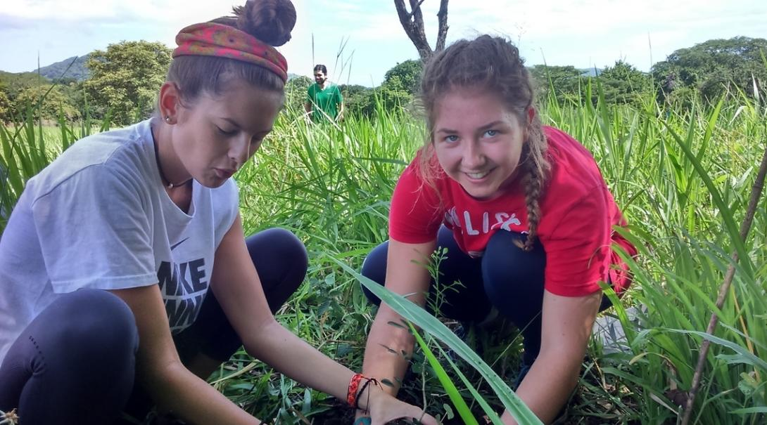Projects Abroad volunteers help out with reforestation work during the conservation middle school special